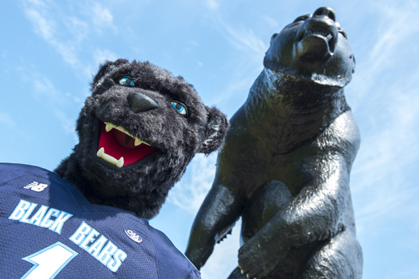Photo of Banana's next to black bear statue
