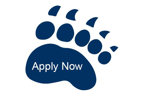 Apply Now bear paw