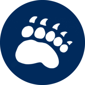 Bear Paw Icon