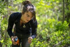 Exploring in nature